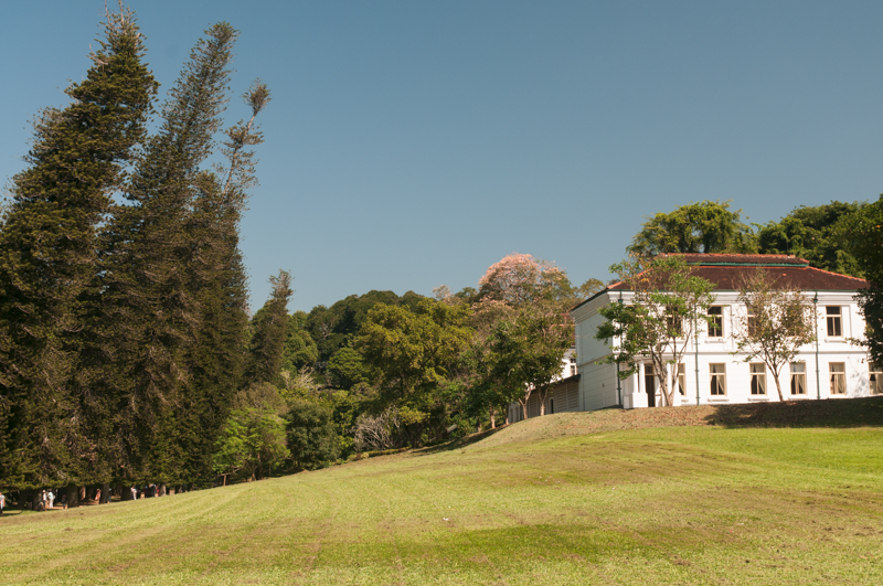 Jardin botanique Peradeniya