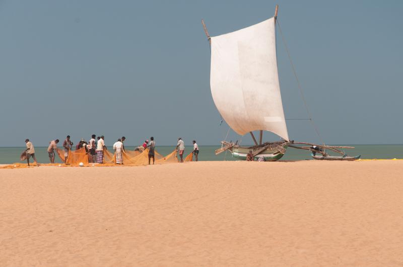 Katumaran, Negombo